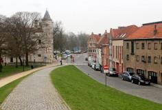 Brugge grass website